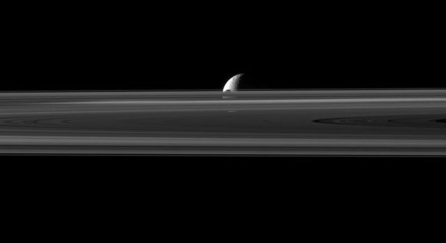 The small moon Janus is almost hidden between the planet's rings and the larger moon Rhea in this image captured by NASA's Cassini spacecraft. The northern part of Janus can be seen peeking above the rings.