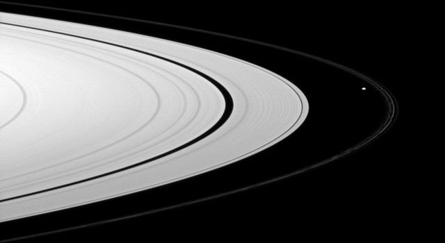 Saturn's A ring appears bright compared to the thin F ring, which is shepherded by the moon Prometheus, in this view from NASA's Cassini spacecraft.
