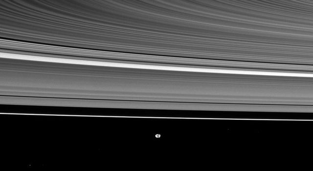 Saturn's rings appear curved in this view from NASA's Cassini spacecraft, which also shows the moon Janus in the distance. Janus is at the bottom of the image and is farther from the spacecraft than the rings are.