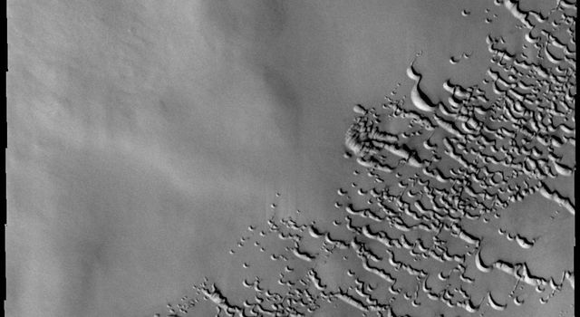 This image, taken by NASA's 2001 Mars Odyssey spacecraft, of dunes in the north polar region was collected in early spring. Frost still covers the dunes.