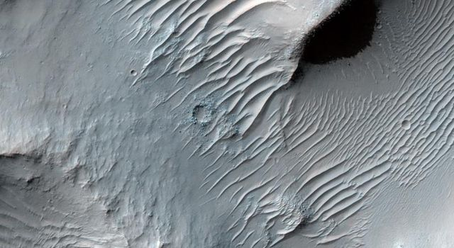 This image taken by NASA's Mars Reconnaissance Orbiter shows Samara Valles, one of the longest ancient valley systems on Mars; its surface is mantled with dust as evidenced by the system of dunes that line the valley floor.