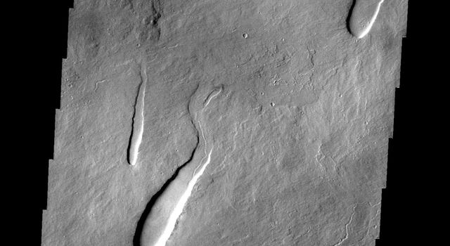 This image from NASA's 2001 Mars Odyssey shows part of the northeastern flank of Ascraeus Mons, one of the large Tharsis volcanoes. The channels were carved by lava, not by water.