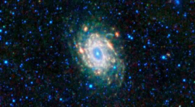 This mosaic image from NASA's Wide-field Infrared Survey Explorer is located in a constellation in the southern sky, Pavo, which is Latin for peacock.