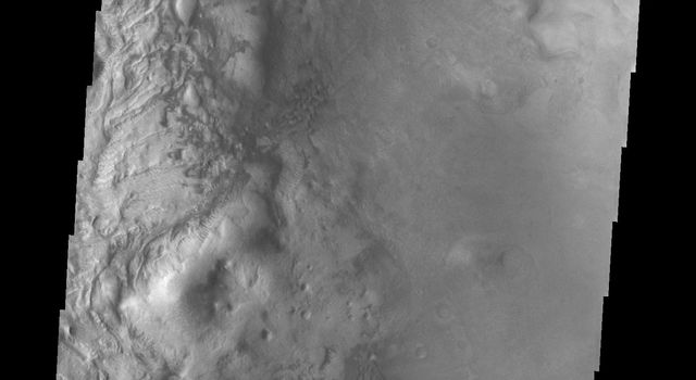This image from NASA's 2001 Mars Odyssey highlights individual dunes located on the floor of Moreaux Crater.