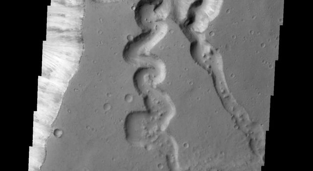 This image from NASA's 2001 Mars Odyssey shows a complex tributary channel and its entry to the main channel of Shalbatana Vallis.