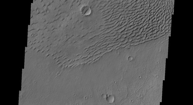 This image from NASA's Mars Odyssey shows sand dunes covering the floor of this unnamed crater in Terra Cimmeria.