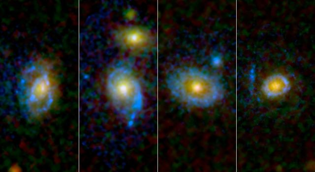 Astronomers have found unexpected rings and arcs of ultraviolet light around a selection of galaxies, four of which are shown here as viewed by NASA's and the European Space Agency's Hubble Space Telescope.
