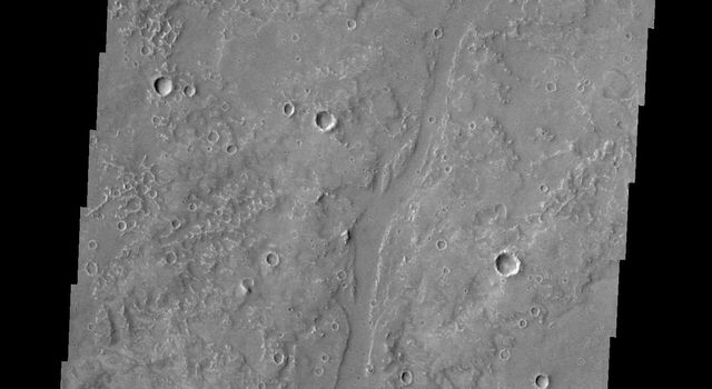 The small channels in this image of Utopia Planitia are south of Granicus Valles were captured by NASA's Mars Odyssey on July 23, 2010.