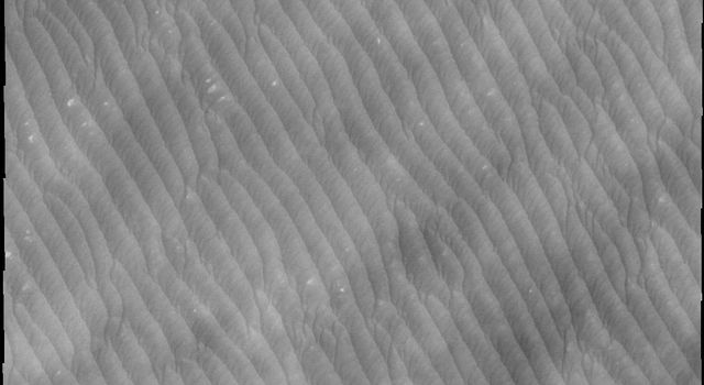 Clouds are common near the north polar caps throughout the spring and summer. The clouds typically cause a haze over the extensive dune fields. This image from NASA's Mars Odyssey shows the edge of the cloud front.