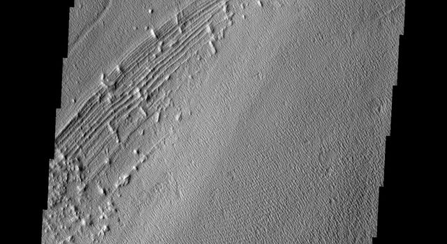 This image from NASA's Mars Odyssey shows Pavonis Mons, one of the three huge Tharsis volcanoes, encircled on the west side by a series of arcuate ridges. How these features were formed is still unknown.