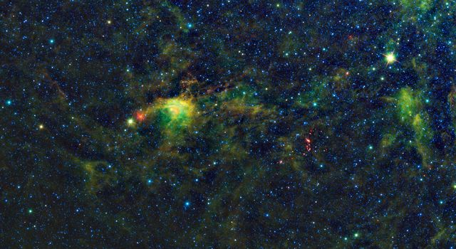 NASA's Wide-Field Infrared Survey Explorer has uncovered a striking population of young stellar objects in a complex of dense, dark clouds in the southern constellation of Circinus.