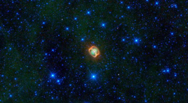 A colorful creature in a starry sea stands out in this image from NASA's Wide-field Infrared Explorer; infrared light that has been assigned visible colors we see with our eyes. The jellyfish-looking object is actually a very close pair of dying stars.
