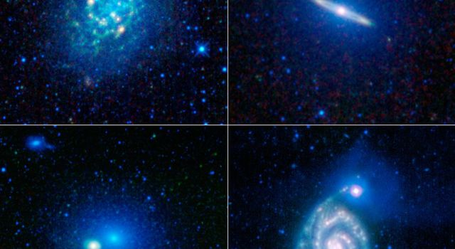 To celebrate the one-year anniversary of the launch of NASA's Wide-Field Infrared Explorer, the mission team put together this image showing just a sample of the millions of galaxies that have been imaged by WISE during its survey of the entire sky.