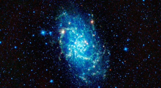 This image captured by NASA's Wide-field Infrared Survey Explorer shows of one of our closest neighboring galaxies, Messier 33. Also named the Triangulum galaxy, M33 is one of largest members in our small neighborhood of galaxies -- the Local Group.