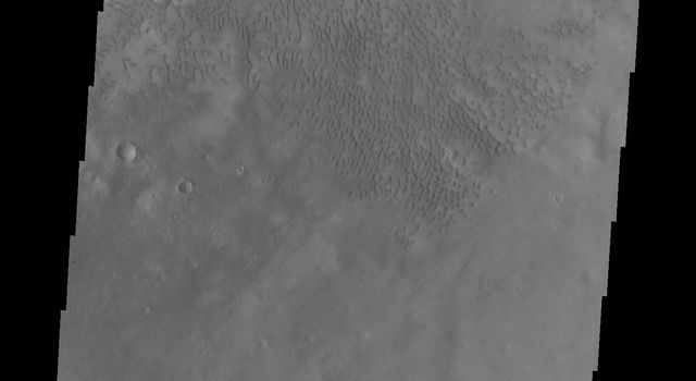 This image, captured by NASA's Mars Odyssey on Sept. 9, 2010, shows some of the dunes of the floor of Moreux Crater.