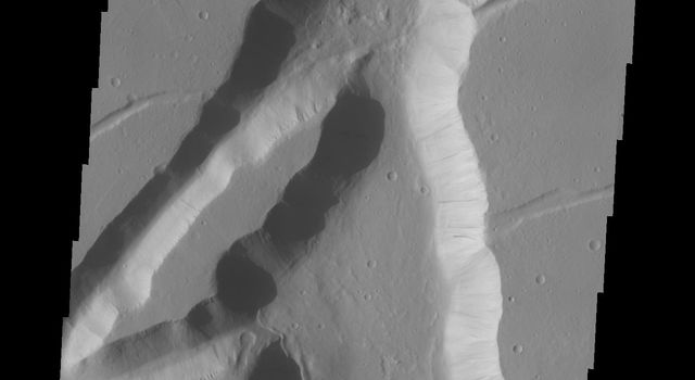 The fracture system shown in this image from NASA's Mars Odyssey is on the northern margin of the Kasei Valles lowland. Fractures like this can become chaos with continued downdropping of blocks and widening fractures.