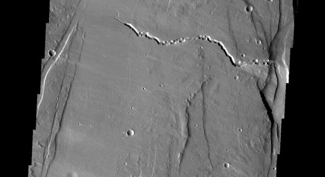Ceraunius Fossae is the region of fractures and volcanic flows south of Alba Mons shown in this image captured by NASA's Mars Odyssey.