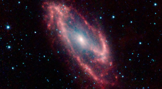 Maffei 2 is the poster child for an infrared galaxy that is almost invisible to optical telescopes. But this infrared image from NASA's Spitzer Space Telescope penetrates the dust to reveal the galaxy in all its glory.