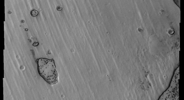 Dark surface material is starting to appear as the frost is sublimated in this image of Pityusa Patera as seen by NASA's Mars Odyssey.