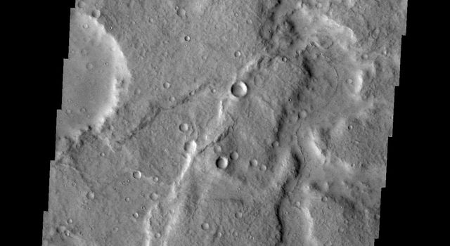 Channels are a common feature on the margin of Terra Cimmeria where the elevation changes from highland to northern lowlands in this image captured by NASA's Mars Odyssey.