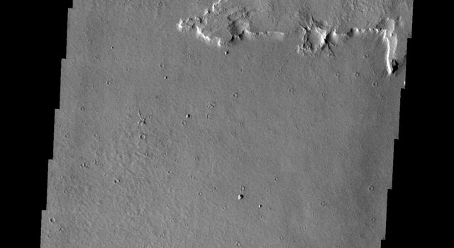 The ejecta of this unnamed crater in Amazonis Planitia is more resistant than the material around it in this image taken by NASA's Mars Odyssey.