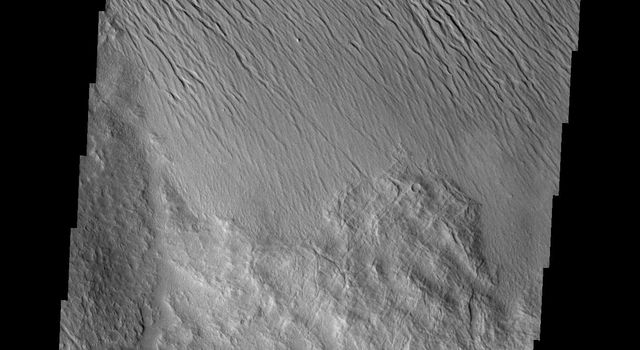 It is unclear what process has eroded the surface in this part of the Tharsis region. Wind is likely, but it could also be a record of water erosion. This image was captured by NASA's Mars Odyssey.