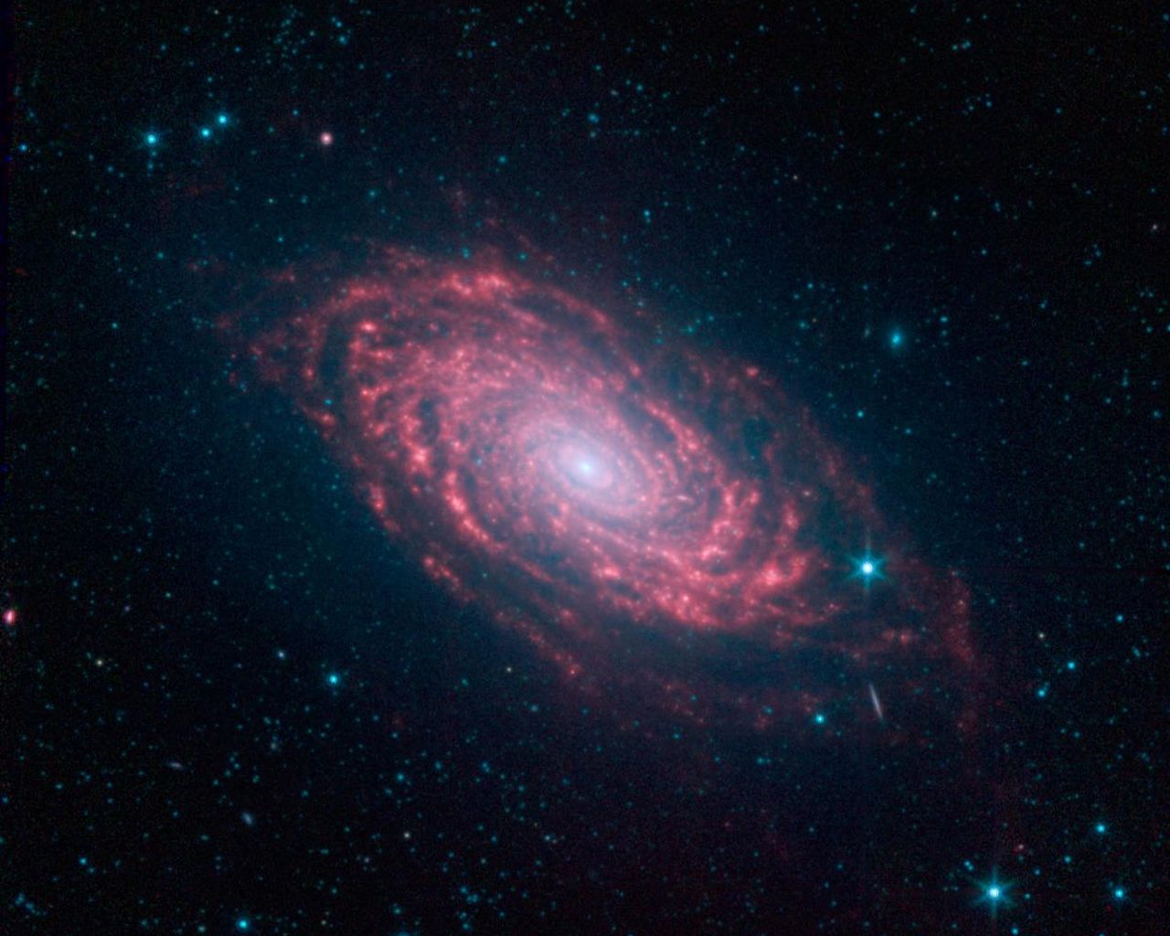 Space images spitzer 39 s sunflower galaxy - Spitzer space telescope wallpaper ...
