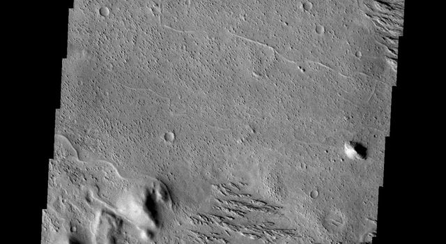 This image from NASA's Mars Odyssey is located west of Zephyria Planum. Surfaces in this region have undergone extensive erosion by the wind. Wind is one of the most active processes of erosion on the surface of Mars today.
