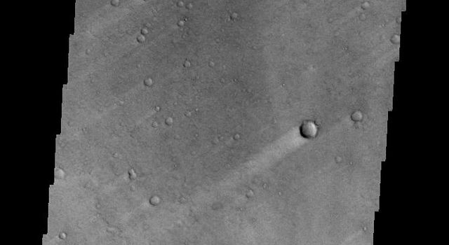 These windstreaks are located in northern Terra Tyrrhena. The wind was blowing from NE to SW to create the streaks in the lee of the craters. This image is from NASA's Mars Odyssey.