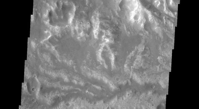 The network of channels seen in this image captured by NASA's Mars Odyssey spacecraft is called Arda Valles.
