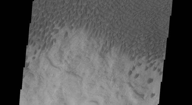 NASA's Mars Odyssey spacecraft captured this image of dunes located in Aonia Terra.