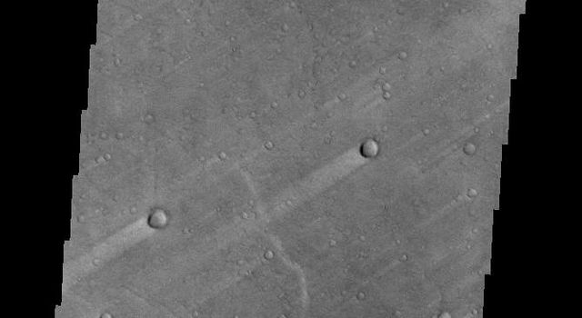 The windstreaks in this image captured by NASA's Mars Odyssey are located on the plains of southern Syrtis Major Planum.