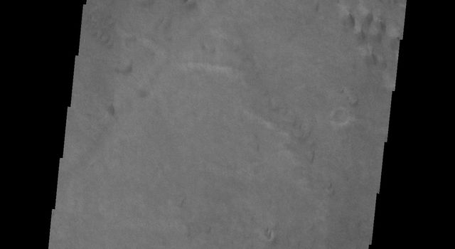 The dunes shown in this image from NASA's 2001 Mars Odyssey are located on the floor of Hussey Crater in Terra Sirenum.