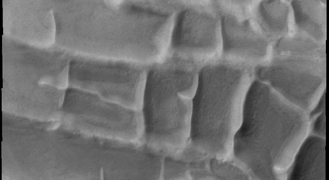 The orthogonal ridges in this image captured by NASA's 2001 Mars Odyssey spacecraft are located near the south polar cap of Mars.