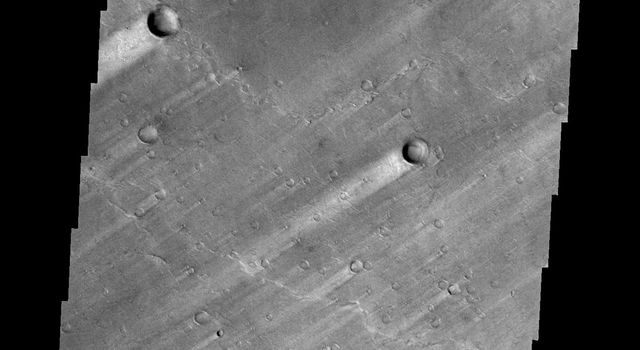 The windstreaks in this image of Syrtis Major Planum indicate winds blowing from the northeast. This image is from NASA's 2001 Mars Odyssey spacecraft.