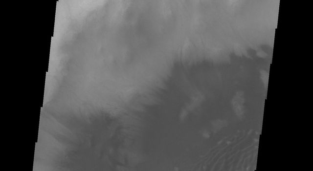 It is now high summer at the South Pole of Mars; the sand dunes in high latitude craters are all frost free. This image captured by NASA's 2001 Mars Odyssey spacecraft is of an unnamed crater in Sisyphi Planum has dunes and and moving out of the crater.
