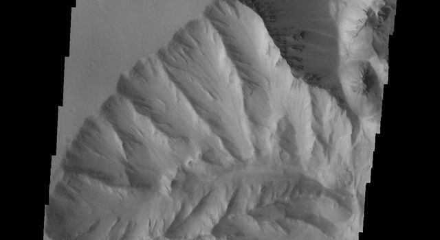 This image captured by NASA's 2001 Mars Odyssey spacecraft shows a portion of the western margin of Ophir Chasma. Layering can be seen in the upper walls of the canyon.