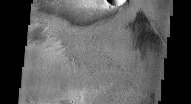The windstreak in this image from NASA's 2001 Mars Odyssey spacecraft is located on the volcanic flows of Daedalia Planum.