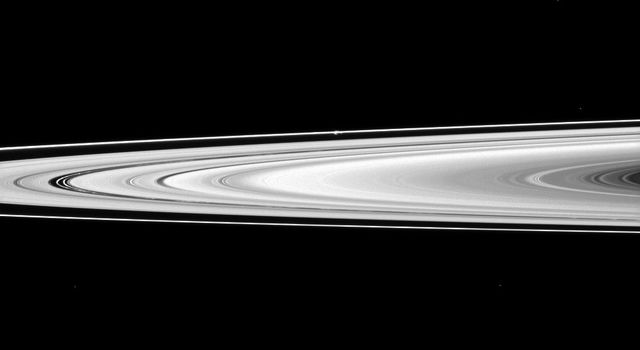 NASA's Cassini spacecraft looks across Saturn's rings and finds the moon Prometheus, a shepherd of the thin F ring. Prometheus looks like a small white bulge near the F ring -- the outermost ring seen here -- above the center of the image.