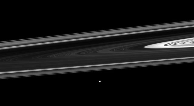NASA's Cassini spacecraft watches Saturn's small moon Epimetheus orbiting beyond the planet's rings. Epimetheus orbits beyond the thin F ring near the bottom center of this view.