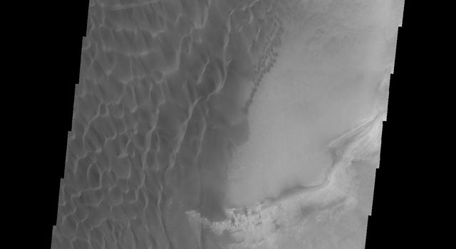 This image from NASA's 2001 Mars Odyssey spacecraft shows part of the sand sheet and dunes on the floor of Rabe Crater.