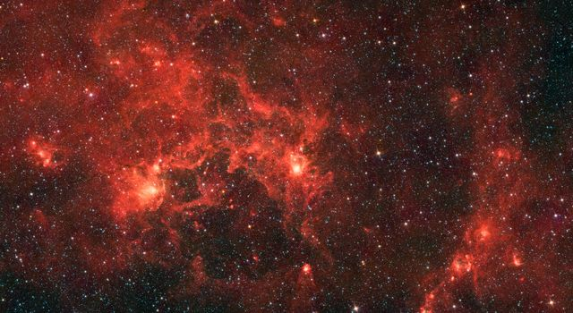 This infrared image from NASA's Spitzer Space Telescope shows the nebula nicknamed 'the Dragonfish.' This turbulent region, jam-packed with stars, is home to some of the most luminous massive stars in our Milky Way galaxy.