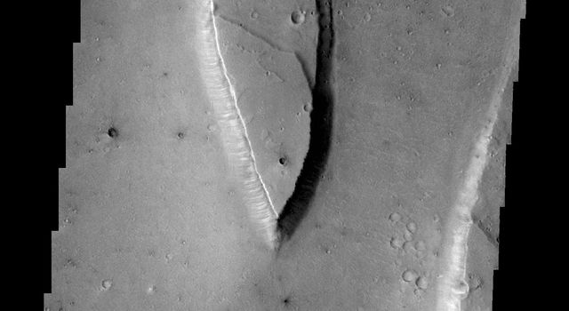 Tiu Valles is the location of the streamlined island in this image from NASA's 2001 Mars Odyssey spacecraft.