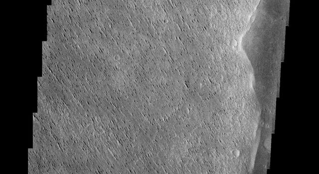 Winds have scoured this region of Elysium Planitia, sculpting the surface into the small parallel hills seen in this image from NASA's 2001 Mars Odyssey spacecraft.