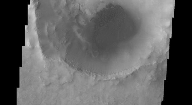 Dunes cover the floor of Bopolu Crater in Meridiani Planum in this image captured by NASA's 2001 Mars Odyssey spacecraft.