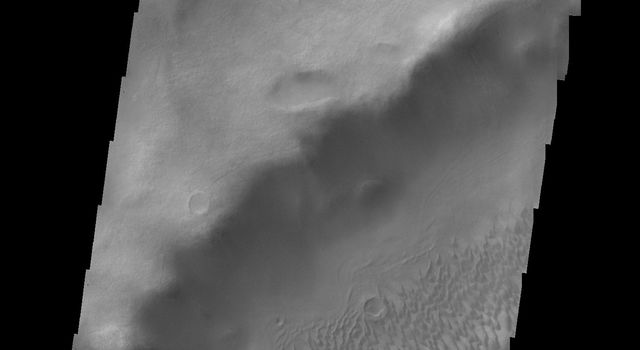 This image from NASA's 2001 Mars Odyssey spacecraft shows the dunes located on the floor of Brashear Crater.