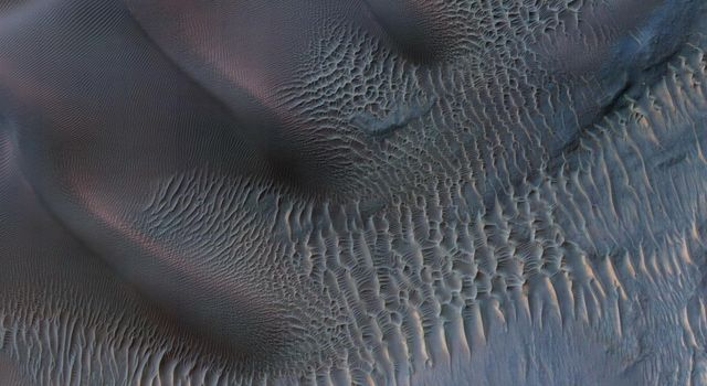 This enhanced-color image from NASA's Mars Reconnaissance Orbiter shows sand dunes trapped in an impact crater in Noachis Terra, Mars.