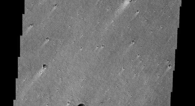 Windstreaks located in Chryse Planitia as seen by NASA's 2001 Mars Odyssey spacecraft.