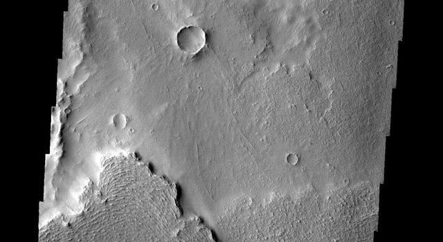 Lava flows near the margin of Daedalia Planum are seen in this image from NASA's 2001 Mars Odyssey spacecraft.