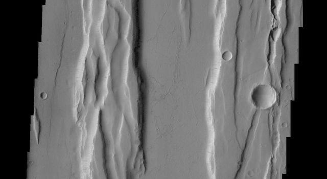 The north-south trending fractures and graben (block down-dropped between two fractures) in this region are called Ceraunius Fossae and are likely related to Alba Mons to the north shown in this image from NASA's 2001 Mars Odyssey spacecraft.